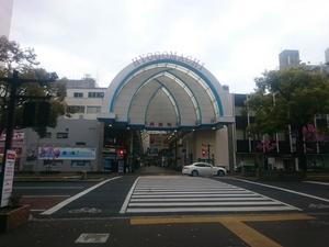 DSC_04141.JPG