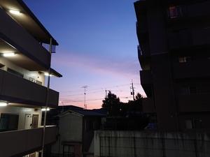 DSC_3902.JPG